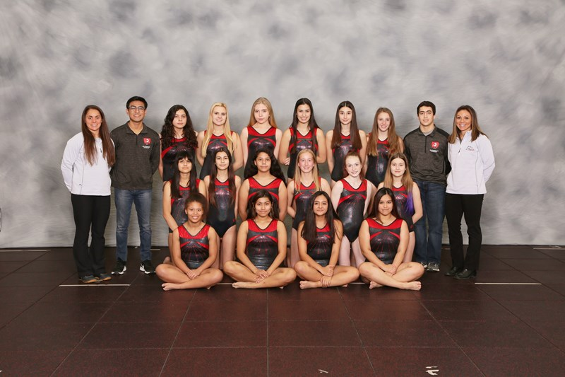 JV  Girls Gymnastics