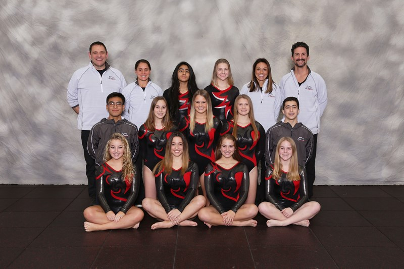 Girls Gymnastics JV
